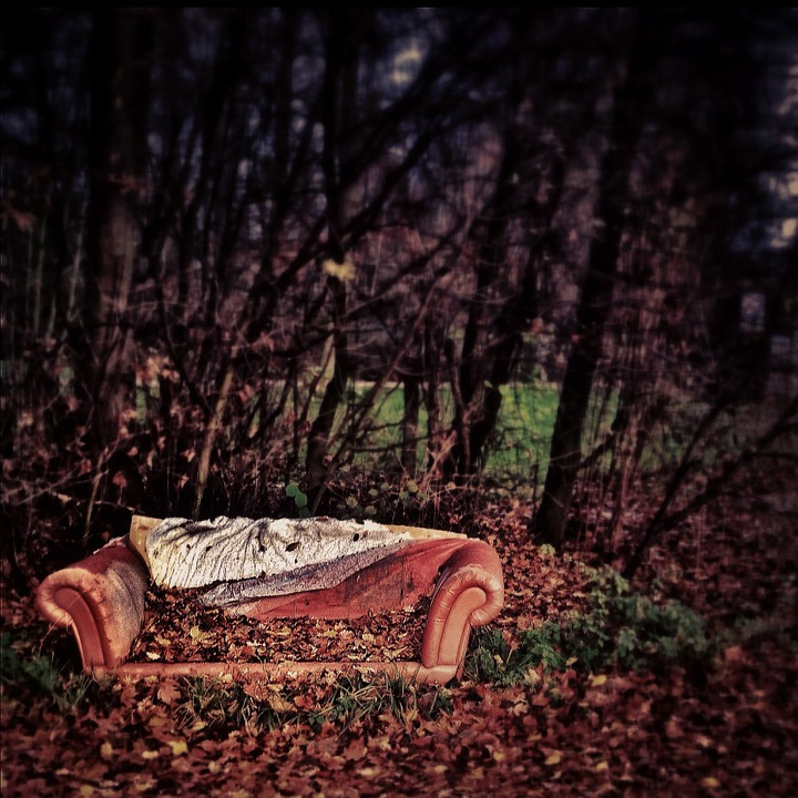 red couch poligrafia