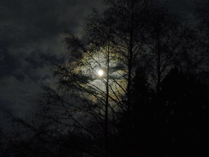 Por 7854. (Disponível em: https://pixabay.com/en/moon-at-night-moonlight-full-moon-54671/)