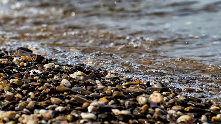 Por JuergenPM. (Disponível em: https://pixabay.com/en/water-wet-river-nature-bank-243910/)
